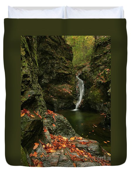 Water Falls As Autumn Starts Duvet Cover by Karol Livote