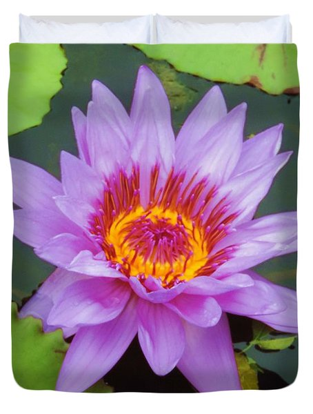Water Lilies 005 Duvet Cover by Robert ONeil