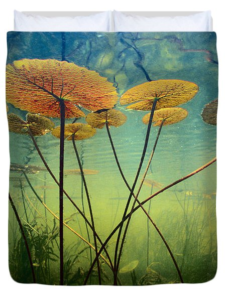 Water Lilies Duvet Cover by Frans Lanting MINT Images