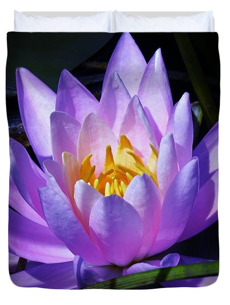 Water Lily Blues Duvet Cover by Sherman Perry