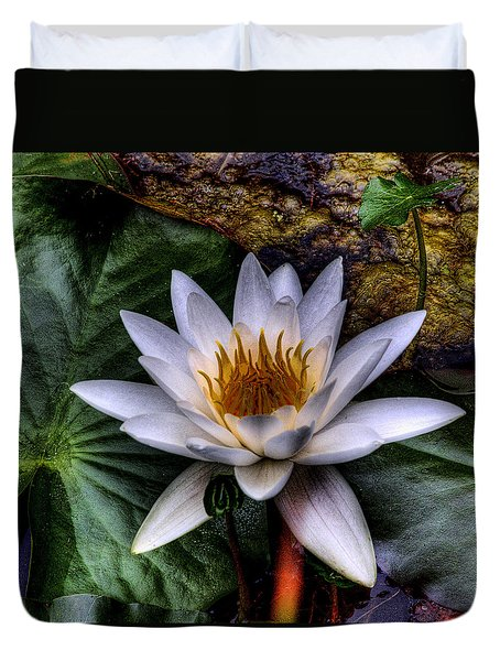 Water Lily Duvet Cover by David Patterson