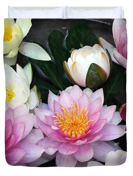 Duvet Cover featuring the photograph Water Lily Series -2  by Haleh Mahbod