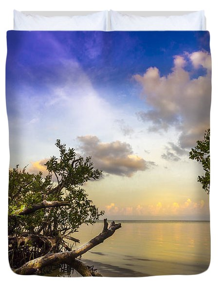 Water Sky Duvet Cover by Marvin Spates