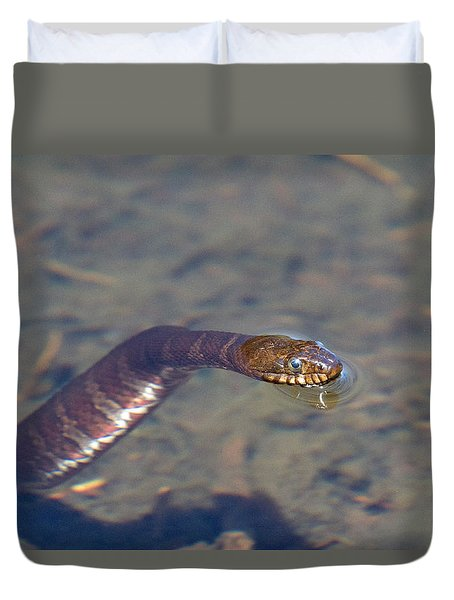 Water Snake Duvet Cover by Karol Livote