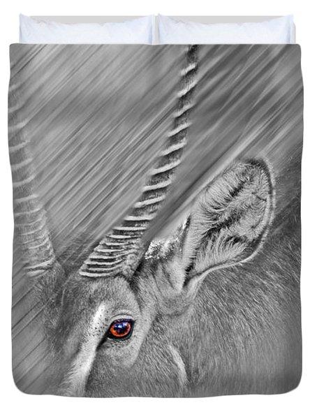 Waterbuck Duvet Cover