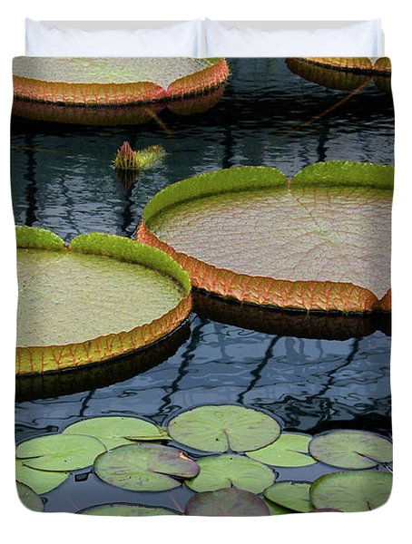 Waterlilies And Platters 2 Duvet Cover