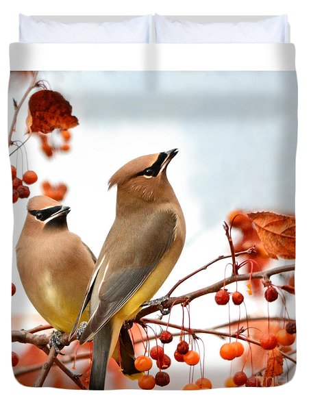 Beautiful Waxwing  Duvet Cover