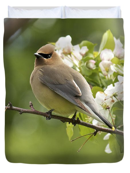 Waxwing In A Dream Duvet Cover