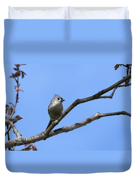 Weary Wings Duvet Cover by Christina Rollo