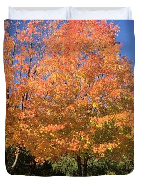 Duvet Cover featuring the photograph Welcome Autumn by Gordon Elwell