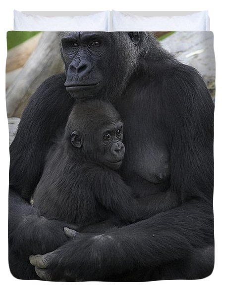 Western Lowland Gorilla Mother And Baby Duvet Cover by San Diego Zoo