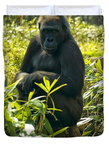 Western Lowland Gorilla Sitting On A Tree Stump Duvet Cover by Chris Flees