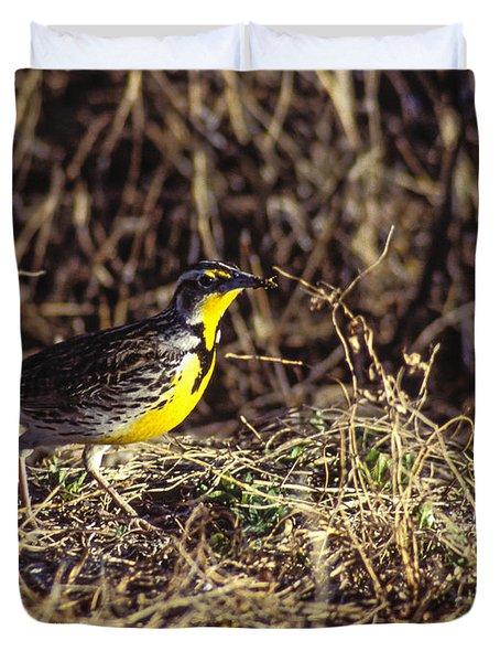 Western Meadowlark Duvet Cover by Steven Ralser