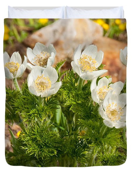 Western Pasqueflower And Buttercups Blooming In A Meadow Duvet Cover by Jeff Goulden