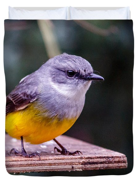 Western Yellow Robin Duvet Cover