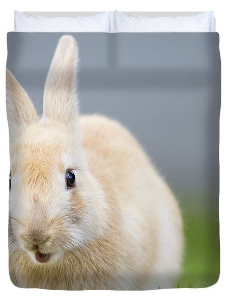 What's Up Doc Duvet Cover