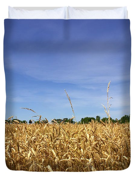Wheat Field II Duvet Cover by Beth Vincent