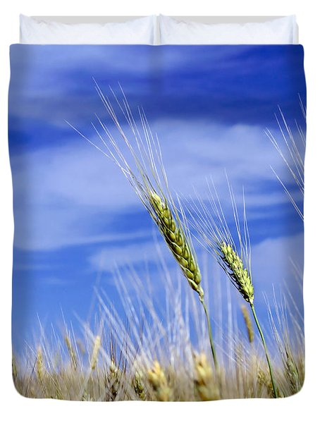 Duvet Cover featuring the photograph Wheat Trio by Keith Armstrong
