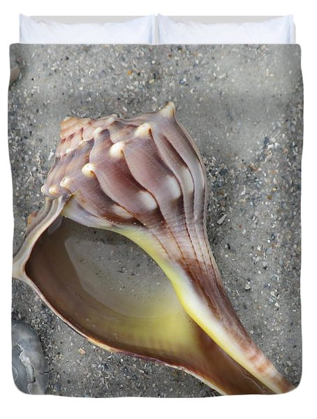 Whelk With Sand Duvet Cover by Ellen Meakin