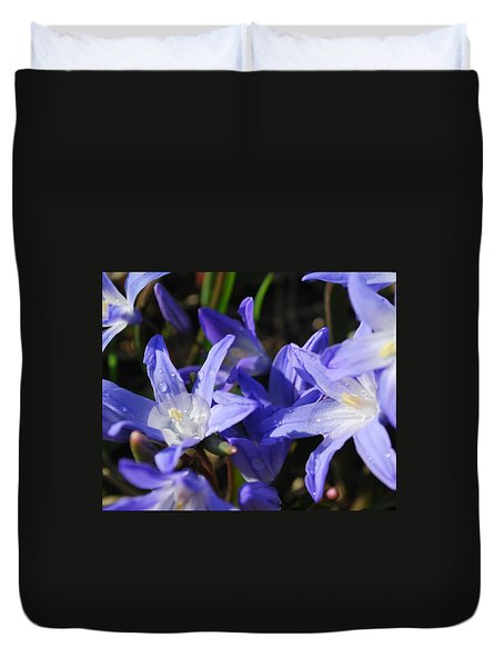 When The Sun Comes Out II Duvet Cover by Micheline Heroux