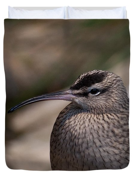 Duvet Cover featuring the photograph Whimbrel by Bianca Nadeau