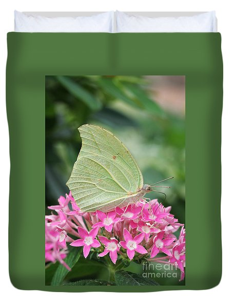 Duvet Cover featuring the photograph White Angled Sulphur by Judy Whitton