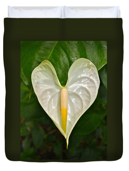 White Anthurium Heart Duvet Cover by Venetia Featherstone-Witty