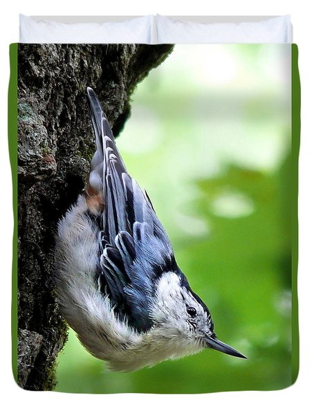 White Breasted Nuthatch Duvet Cover