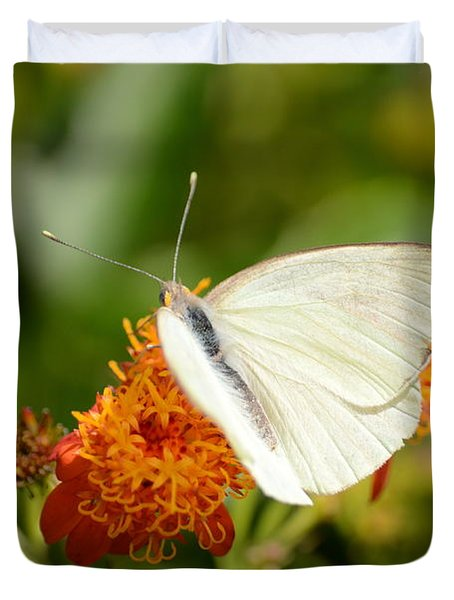 White Butterfly On Mexican Flame Duvet Cover by Debra Martz
