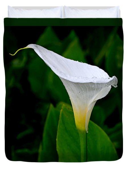 White Calla Duvet Cover by Rona Black