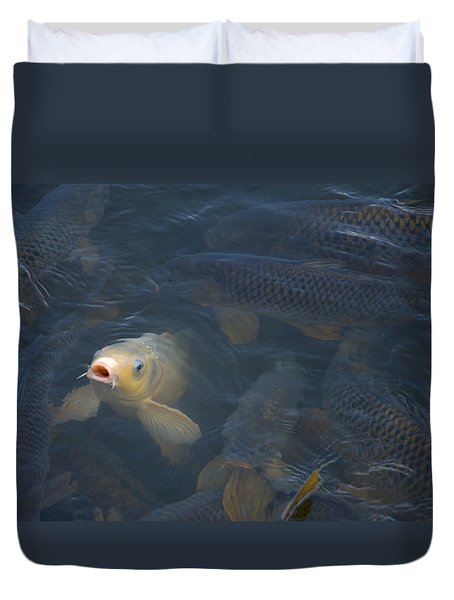 White Carp In The Lake Duvet Cover by Chris Flees