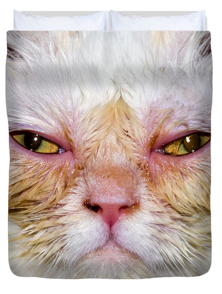 Scary White Cat Duvet Cover
