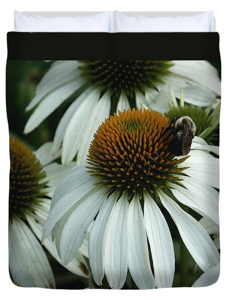 White Coneflowers  Duvet Cover