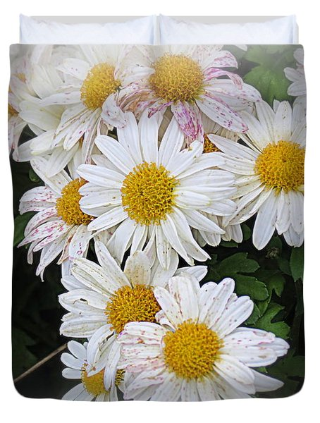White Daisies Duvet Cover by Kay Novy