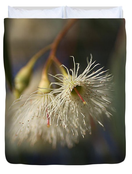 White Eucalyptus  Duvet Cover by Joy Watson