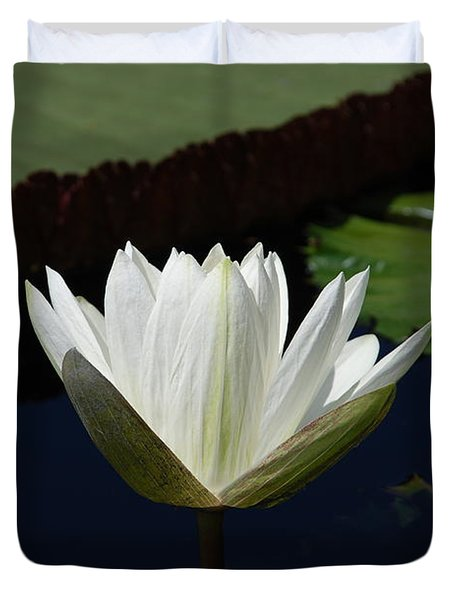 Duvet Cover featuring the photograph White Flower Growing Out Of Lily Pond by Jennifer Ancker
