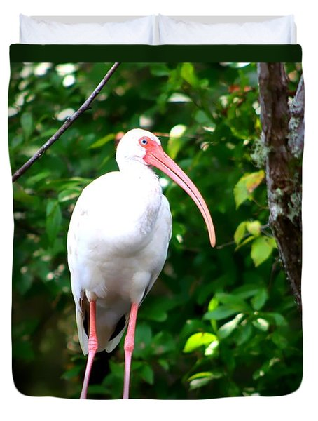 Duvet Cover featuring the photograph White Ibis by Debra Forand
