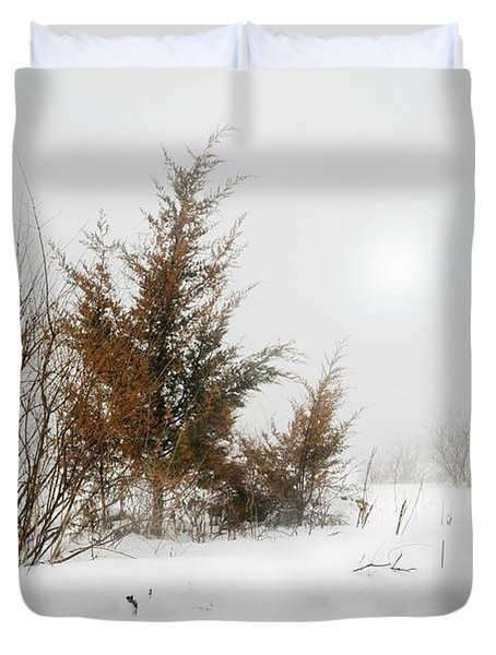 White Magic Duvet Cover by Diana Angstadt