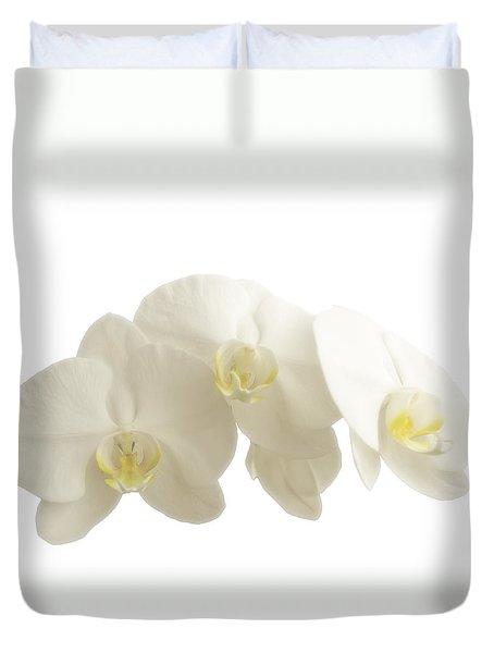 White Orchids On White Duvet Cover