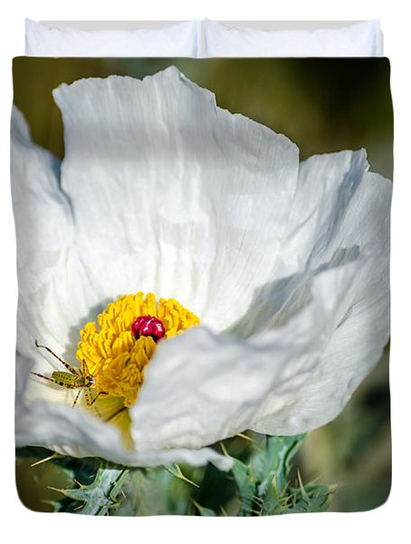 White Prickly Poppy Wildflower Duvet Cover by Debra Martz
