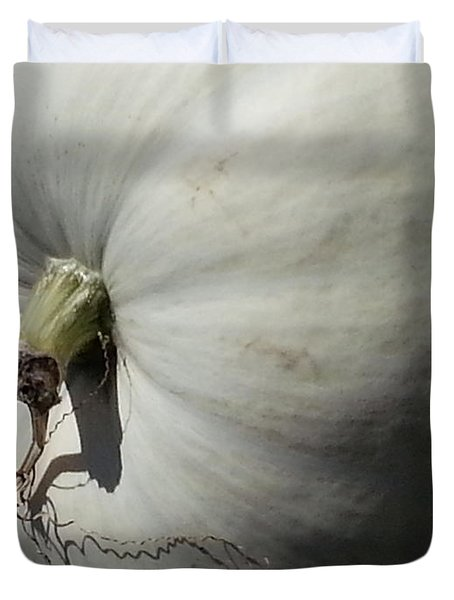 White Pumpkin Duvet Cover by Caryl J Bohn