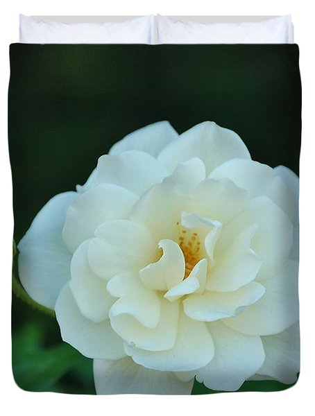 White Rose With Two Buds Duvet Cover
