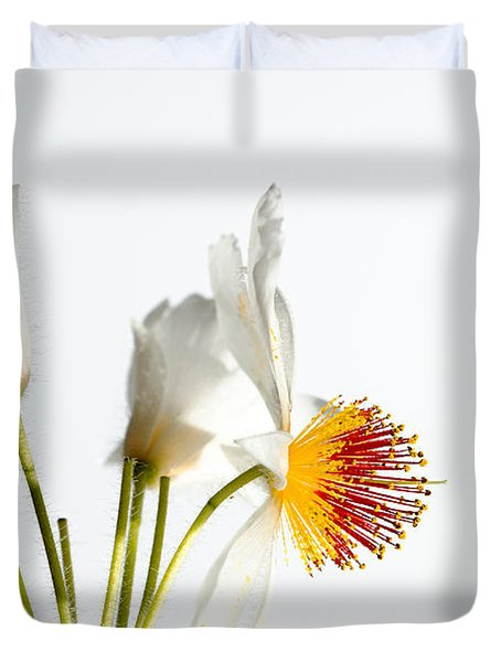 White Sparmannia Africana Plant. Duvet Cover