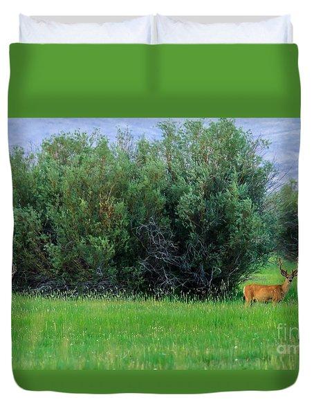 White-tail Bucks Duvet Cover