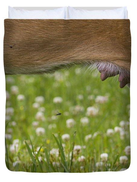 White-tailed Deer Udder Duvet Cover