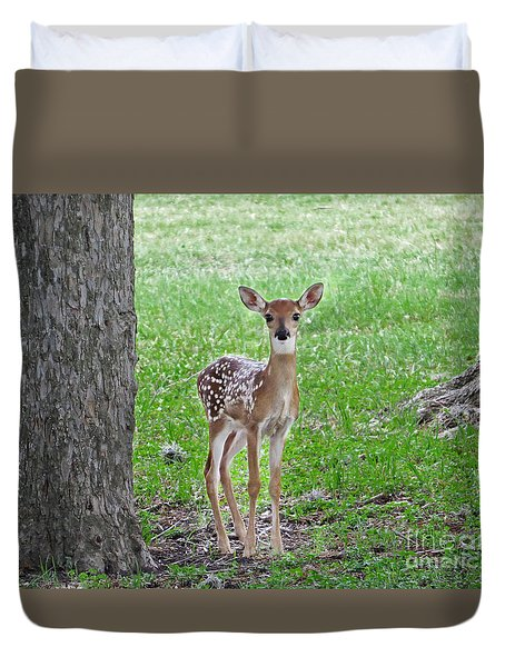 White-tailed Fawn - Face Of Innocence Duvet Cover