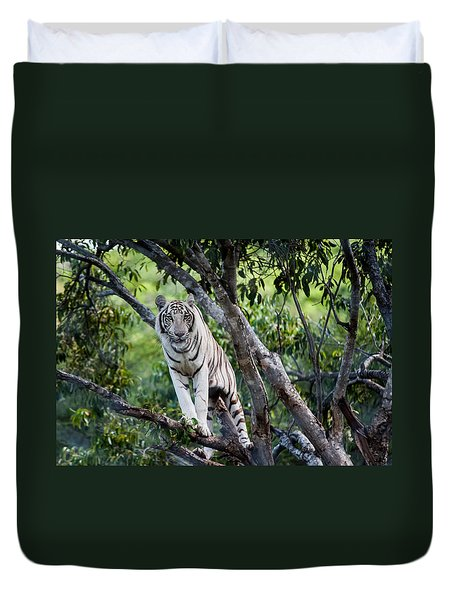 White Tiger On The Tree Duvet Cover by Jenny Rainbow
