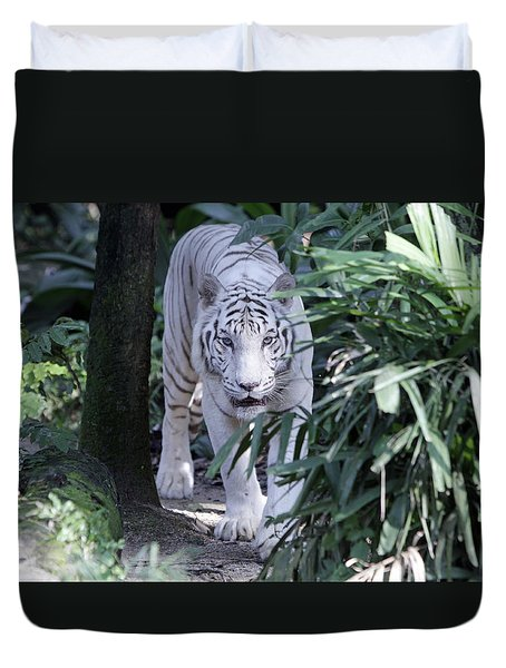 Duvet Cover featuring the photograph White Tiger  by Shoal Hollingsworth