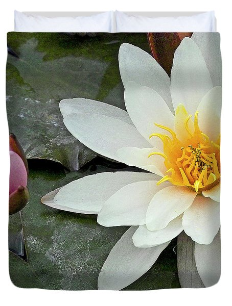 White Water Lily Nymphaea Duvet Cover by Heiko Koehrer-Wagner