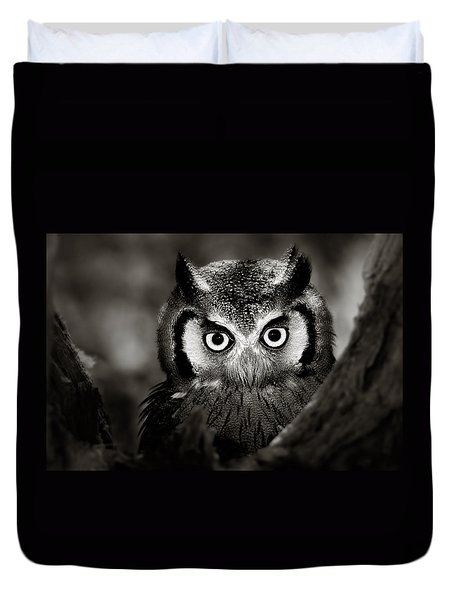 Whitefaced Owl Duvet Cover by Johan Swanepoel